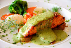 Bistecca di color salmone Immagine Stock