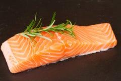 Bistecca di color salmone con il ramoscello dei rosmarini Fotografia Stock