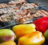 Bistecca di color salmone cotta Immagini Stock Libere da Diritti