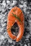 Bistecca di color salmone cruda fresca con timo e rosmarini su ghiaccio fotografia stock libera da diritti