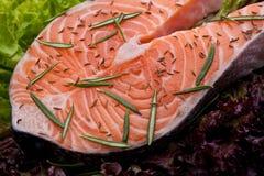 Bistecca di color salmone fresca con i semi di cumino dei prati e del rosmarino Immagine Stock
