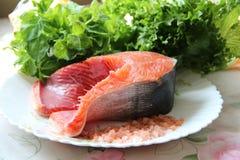 Bistecca di color salmone fresca con le foglie della lattuga Fotografia Stock