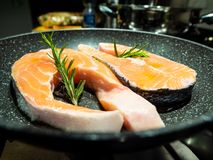 Bistecche del salmone, in una pentola, con i rosmarini, immagine stock libera da diritti