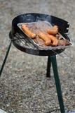 Bistecche e salsiccie sulla griglia fotografia stock libera da diritti