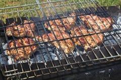 Bistecche sulla griglia Fotografie Stock Libere da Diritti