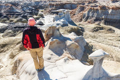 Bisti badlands Royalty Free Stock Photos