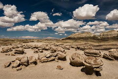 Bisti Egg Garden Royalty Free Stock Image