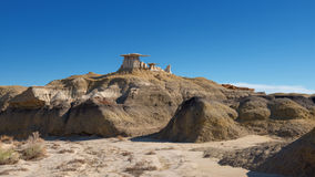 Bisti Wing Royalty Free Stock Images