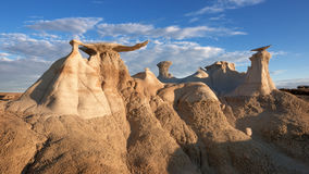 Bisti Wing Royalty Free Stock Photo