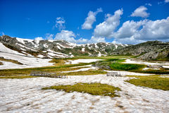 The Bistra mountain in spring Stock Image