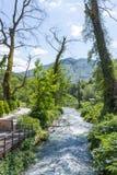 Bistrice river near Blue Eye spring. Royalty Free Stock Image