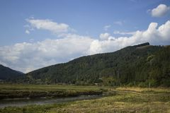 Bistrita rzeka od Poiana Largului Zdjęcie Royalty Free