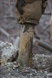Bit de Jackhammer photo libre de droits