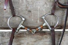 Bit för hästD-cirkel Snaffle Arkivfoto