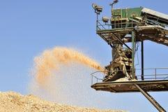 Bita trä för Sawmill in i sawdust royaltyfria foton
