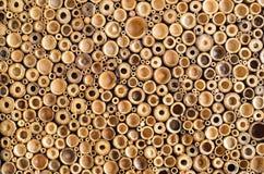 Bita wood bakgrund Fotografering för Bildbyråer