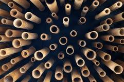 Bitande bambu, tvärsnitt av bambu Arkivbilder
