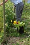 Bitande blommor för en bukett Royaltyfri Bild