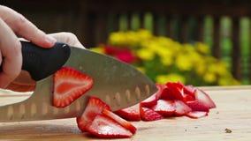 Bitande jordgubbar stock video
