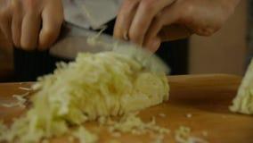 Bitande kål för kock stock video