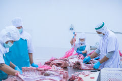 Bitande köttslakthusarbetare i fabriken Royaltyfri Foto