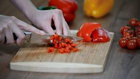 Bitande ny röd peppar Ny peppar på ett träbräde Kocksnittgrönsaker med en kniv lager videofilmer