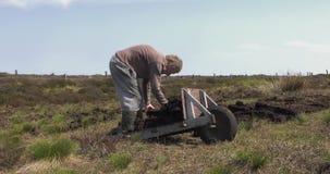 Bitande och passande torvatorv med en spade i Moss Bog i Irland arkivfilmer