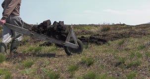 Bitande och passande torvatorv med en spade i Moss Bog i Irland stock video
