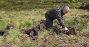 Bitande och passande torvatorv med en spade i mossamyr i Irland stock video