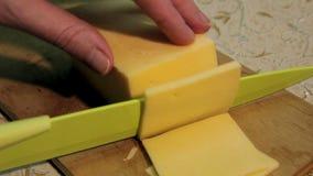 Bitande ost stock video