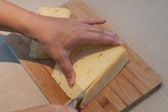 Bitande ost - matingredienser Fotografering för Bildbyråer