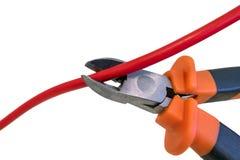 Bitande röd tråd vid pojkar, beskärning kabeln under spänning Royaltyfri Foto