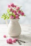 Bitande rosor Royaltyfria Foton