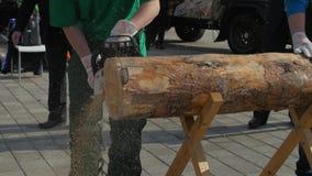 Bitande stam för Chainsaw Man med chainsawen som klipper trädet Chainsaw som klipper nära övre för vedträ Man som klipper en fili stock video