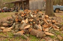 Bitande trä fotografering för bildbyråer