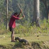 Bitande trä för Tharu man på flodstranden, Nepal Royaltyfri Foto