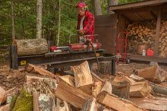 Bitande trä med en journaldelare Fotografering för Bildbyråer