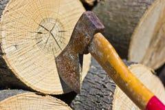 Bitande träd med yxan Royaltyfri Foto