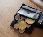 Bitcins van euro portefeuille stock afbeelding