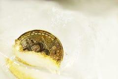 Bitcoin在冰片断的一半结冰的金币在白色背景的 结冰金融性资产 秋天  免版税图库摄影