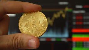 Bitcoin数字式硬币在人的手上在贸易的终端对面的 影视素材