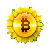 Bitcoin真正金钱的花概念bitcoin和blockchain的 向日葵象, bitcoin企业概念,传染媒介例证 免版税库存图片