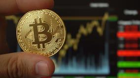 Bitcoin硬币在人的手上在贸易的终端对面的 股票视频