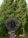 Bitcoin雕象 免版税库存照片
