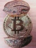 Bitcoin в двух словах Стоковая Фотография