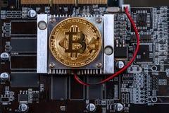 Bitcoin и видеокарта Стоковые Фото