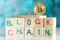 Bitcoin монетки cryptocurrency золота в мышеловке на блоке blockchain Стоковые Фото