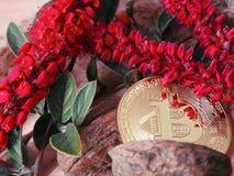 Bitcoin с красными цветками и листьями зеленого цвета Стоковые Изображения RF
