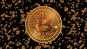 Bitcoin Appearance. Alpha Matte.