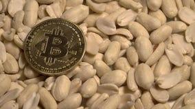 Bitcoin auf geschälten ungesalzenen rohen Erdnüssen zur Hälfte drehend auf Drehscheibe Digital Cryptocurrency und Lebensmittel stock footage